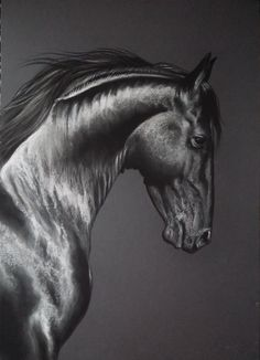 Performer66 Friesian by Pam Slaats . Soft pastel