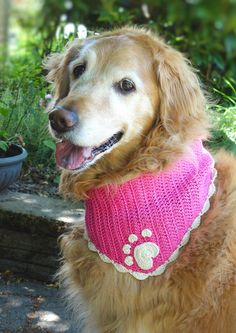 This crochet dog bandana is made from cotton yarn and embellished with a crochet heart paw print applique. The paw print applique is made from one large heart for the pad and four small hearts for the toes. Crochet Ladybug, Crochet Bat, Crochet Dog Sweater, Crochet Animals, Crochet Crafts, Crochet Projects, Free Crochet, Crochet Appliques, Yarn Crafts