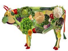 Cosas que no sabes del veganismo. | Salud Alcalina