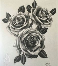 @worldofpencils post of the day - Beautiful roses by artist @dustinyip #pencilart #pencildrawing #artwork #supportartists #theartisthemotive #worldofpencils .