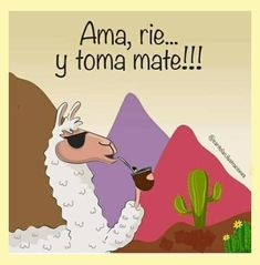 Alpacas, Love Mate, Yerba Mate, Cute Illustration, Learning Spanish, Emoticon, Deco, Memes, Instagram