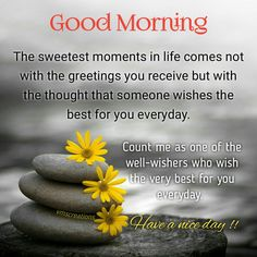 60 motivational good morning quotes good morning quotes find this pin and more on morning messages by brie brie swanlow m4hsunfo