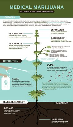 Medical Marijuana.... 18 billion dollars.... from a plant. A renewable plant. Why the hell is it still illegal.