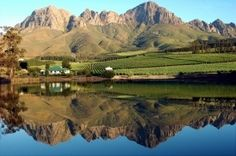 Lourensford Wine Estate - superb cellar with top wines. This destination actually requires a whole day...includes i.a. restaurant, coffee roastery, chocolatiere etc...  http://www.lourensford.co.za/pagelist.aspx?CLIENTID=4777=About==ABOUT
