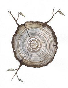 Print Fine Art Illustration - Log tree rings - (5 x 7) Original Watercolor Painting by Lorisworld - Limited edition via Etsy