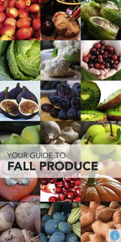 The Best Fruits and Veggies to Eat This Fall delectable heavenly eats! Fall Fruits, Best Fruits, Seasonal Fruits, Fall Recipes, Healthy Recipes, Drink Recipes, Healthy Fruits And Vegetables, Clean Eating, Healthy Eating