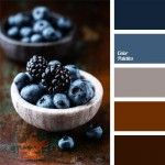 berry shades, blackberry blue, blackberry color, blueberry color, brown and dark blue, color of berries, color of blackberry, color of blueberries