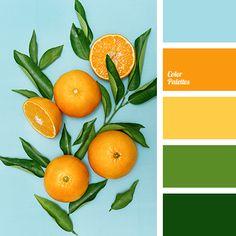 new Ideas bath room colors palette orange Shades Of Yellow Color, Orange Color Palettes, Green Colour Palette, Green Colors, Bright Colors, Orange Shades, Spring Color Palette, Summer Color Palettes, Warm Colors
