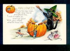 """Halloween Black Cat Witch """"Exorcises"""" Ghost from Mice JOL House Whitney Postcard 