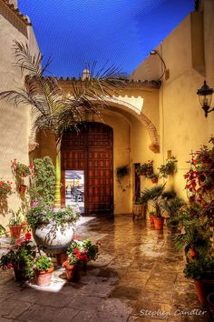 Spanish Courtyard with potted plants. Can see myself seated here enjoying cafe con leche and I prefer tea.