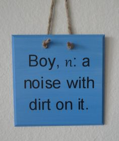 Love this---they really are noisy and dirty!! Wooden Plaque. Blue. Boy n A noise with dirt on it. by EverandOak, $19.99