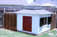 My husband would killlll me! but we do like eggs and if I run out of house projects this would be next... A chicken coop!