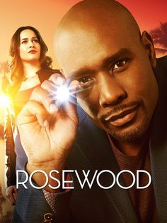 Jaina Lee Ortiz as Det. Annalise Villa in Rosewood (2015