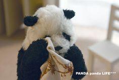 sad teddy panda bear Niedlicher Panda, Panda Bebe, Panda Art, Funny Animal Pictures, Funny Animals, Panda Background, Panda Lindo, Cute Panda Wallpaper, Baby Panda Bears