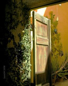 Beautiful weathered Garden door
