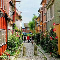 Elsinor o Helsingør Dinamarca Es una ciudad portuaria del noroeste de Selandia Dinamarca situada en la parte más estrecha del Øresund frente a la ciudad sueca de Helsingborg. Tiene 46.300 habitantes en 2012. Elsinor es la capital del municipio homónimo y es la segunda ciudad más poblada de la Región Capital después del área urbana de Copenhague. Aunque estadísticamente no forma parte del área metropolitana de Copenhague en varios aspectos se ha estado convirtiendo desde finales del siglo XX…