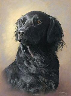 Haken, Mike - Dog Portrait (I think-Black Labrador) Dog Portraits, Portrait Art, Animal Paintings, Animal Drawings, Oil Painting Pictures, Dog Artwork, Fauna, Pet Birds, Dog Breeds