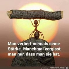 and sometimes you have to rest for a moment to get new strength - Zitate - German Quotes, Truth Of Life, Tumblr Quotes, Thats The Way, True Words, Famous Quotes, True Quotes, Cool Words, Quotations