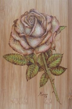 Pyrography on bamboo. An old fashioned rose. Manon Massari https://www.facebook.com/OfMiArt