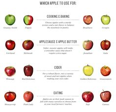 Williams-Sonoma's Apple Guide: Best Apples for Cooking & Baking