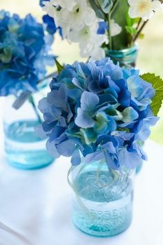 Bridal Shower Centerpieces Idea - Blue hydrangeas in Mason jars with a tiny drop of blue dye in the water. Maybe some clear flat marbles in the bottom too?