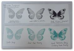 Nicole has 10 color combos for the Watercolor Wings set from Stampin' Up!