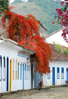 Flowers on the streets of Paraty, Costa Verde, Brazil