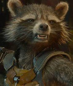 Rocket Raccoon from Guardians of the Galaxy (real footage of raccoon/cgi) Best Marvel Movies, Comic Movies, Marvel Vs, Marvel Comics, Gardians Of The Galaxy, Avengers Superheroes, Man Thing Marvel, Rocket Raccoon, Great Movies