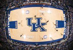 Blue Authentic Rupp Arena Floor Kentucky Wildcat Basketball Coaches Box 6x7