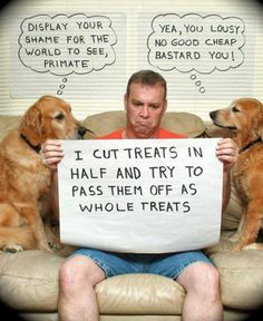 Reverse dog shaming: LOL I've been guilty of this one