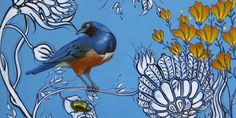 Ashley Cecil-Artist PA--Superb Starling on Blue