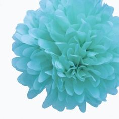 Amazon.com: Dress My Cupcake Tiffany Blue Tissue Paper Pom Poms Party Kit, Set of 12 - Tiffany Blue Wedding Decorations, Tiffany Blue Party Supplies, Coordinate with Tiffany Favors: Home & Kitchen $31,99