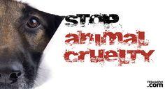 #LUrlodiAngelo sveglierà l'Italia? La grandezza di una nazione e il suo progresso morale si possono giudicare dal modo in cui tratta gli animali! #Iloveanimals #Ilovepets #againstanimalcruelty #GiustiziaperAngelo #UnitiperAngelo #CrimeNews #FbSocialPet