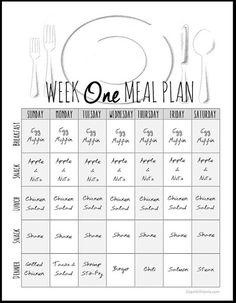 insanity meal plan spreadsheet