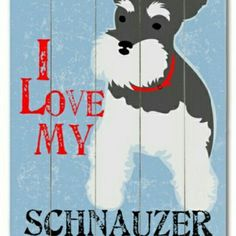 Do you love your Schnauzer? Yes, I love both my Schnauzers. Miniature Schnauzer Puppies, Schnauzer Puppy, I Love Dogs, Puppy Love, Cute Dogs, Adorable Puppies, Yorkies, Schnauzers, Most Popular Dog Breeds