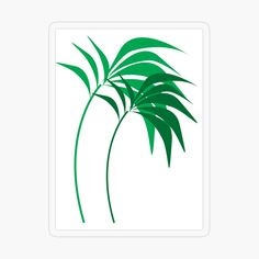 'Palm trees Everywhere' Transparent Sticker by EllenBeb Plastic Stickers, Free Stickers, Personalized Water Bottles, Beach Travel, Transparent Stickers, Sticker Design, Palm Trees, Design Art, Plant Leaves