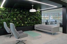 Smeg design incorporates greenery to encourage well-being among employees.