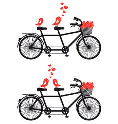 Tandem bicycle with birds in love vector on VectorStock®
