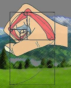 Hand & Golden mean ratio