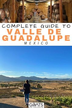 Planning a trip to the Valle de Guadalupe, Mexico? Here is the complete guide to Valle de Guadalupe, Mexico! From the best wineries, restaurants, accommodation, costs, things to do, transport & more. Check this out to get started! | #bestofmexico #mexico #valledeguadalupe Mexico Destinations, South America Destinations, South America Travel, Amazing Destinations, North America, Travel Destinations, I Love Mexico, All Inclusive Vacations, Winter Fun