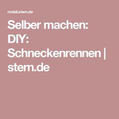 Selber machen: DIY: Schneckenrennen | stern.de