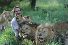 """Zoologist and self-taught animal behaviorist Kevin Richardson, aka """"The Lion Whisperer,"""" has a unique relationship with animals that has been cultivated Kevin Richardson, Big Cat Family, Lion Family, Beautiful Cats, Animals Beautiful, Beautiful Family, Animals And Pets, Cute Animals, Wild Animals"""
