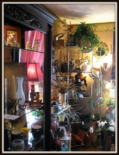 Encore a quality canton ohio consignment store canton ohio list of thrift and consignment shops in or around canton ohio junglespirit Gallery