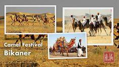 Camel Festival Bikaner - A Spectacular Event.