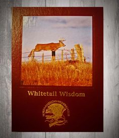 2nd Whitetail Wisdom journal (large size) available at www.barbaragracellc.com