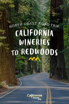 State Highway 128 may just be the greatest stretch of California road you've never heard of. Wine, craft beer, and redwoods await you on this winding north coast route.