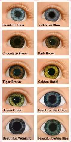 Eye color chart interesting facts about the different variants love the golden eye color chartsskin ccuart Images