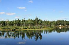 Reflet sur un lac