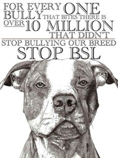 stop BSL, This statement could be directed at any breed of dog, but not any breed of dog is used for fighting, so why is the breed being blamed