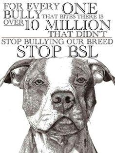 stop BSL